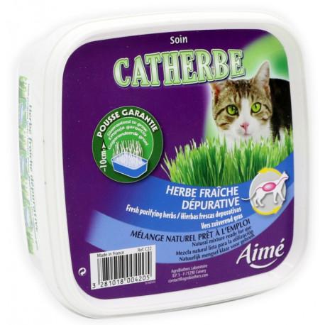 Agro - Fresh Purifying Herbs