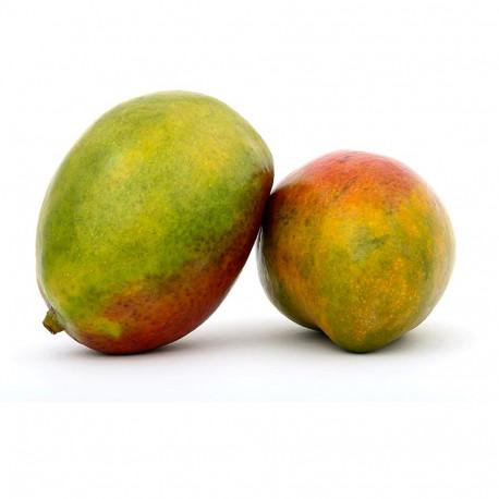Mango Kenya