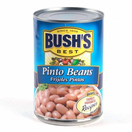 Bush's Best Pinto Beans 454G