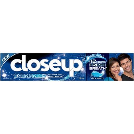 Closeup Everfresh Cool Breeze Toothpaste 120ML