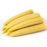 Baby Corn Thailand 120g